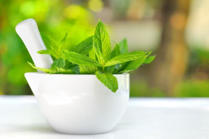 mint leaves for dark circles