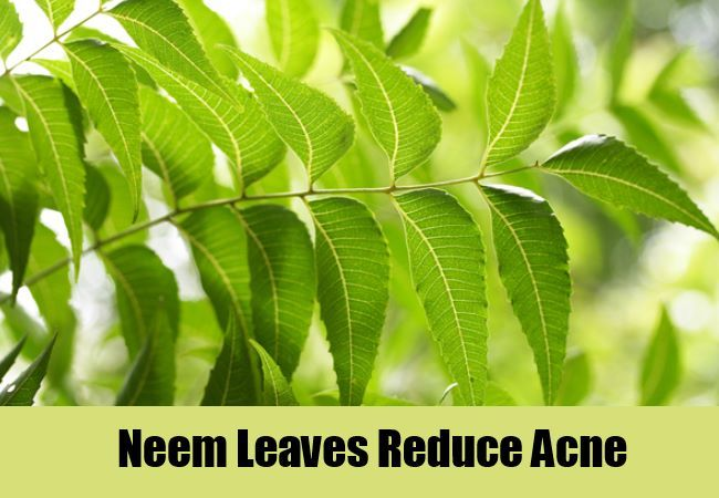 neem for acnes