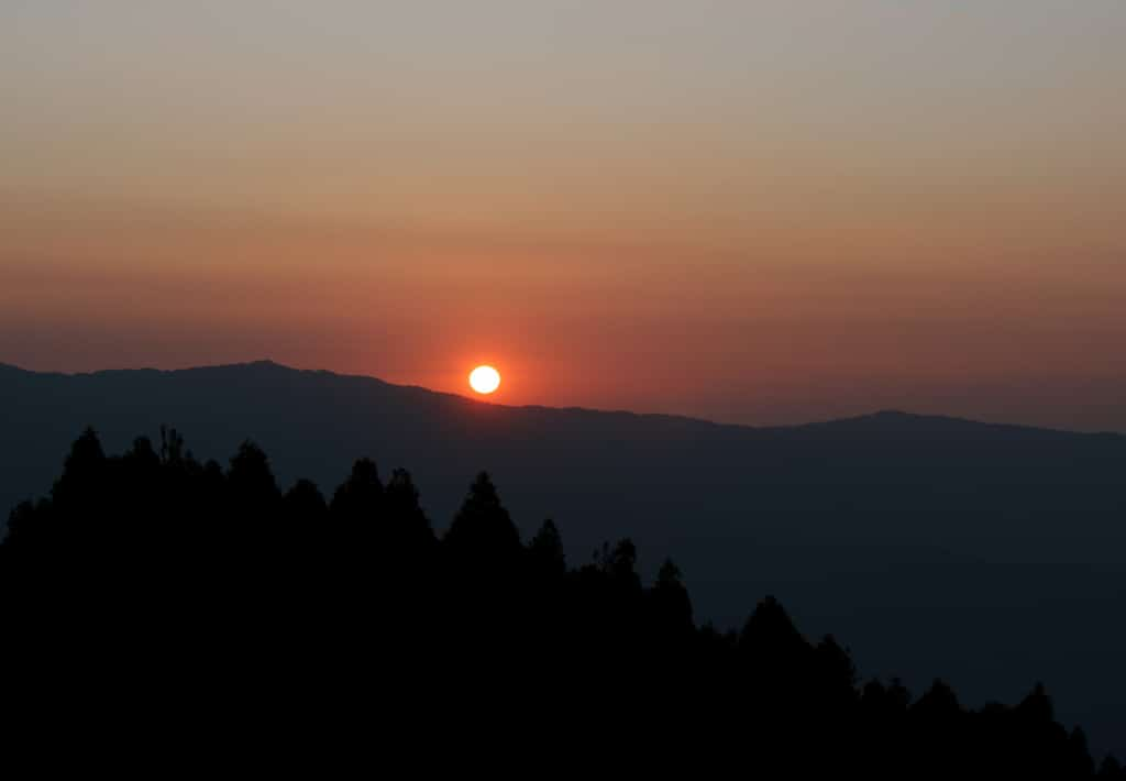 darjeeling morning
