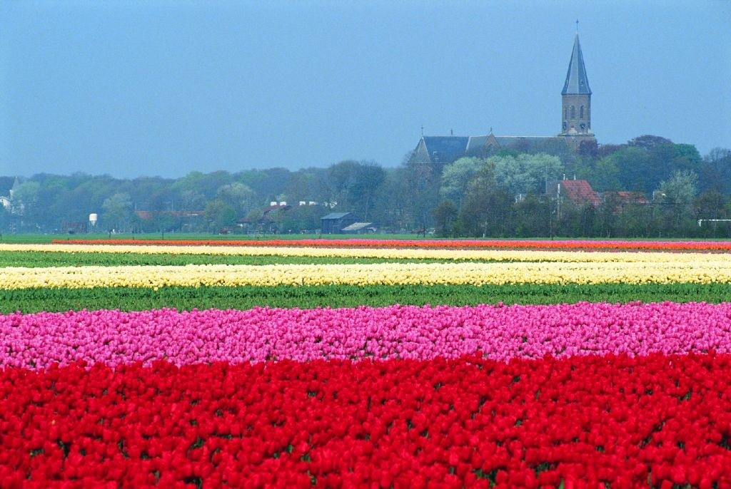 best time to travel netherland