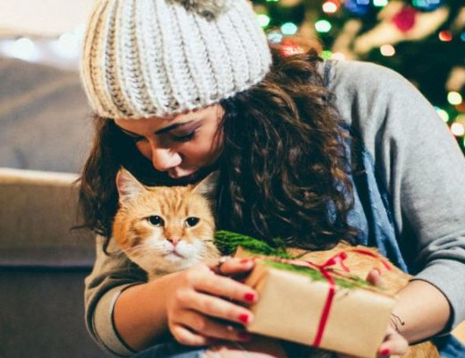 best gift for cat lovers